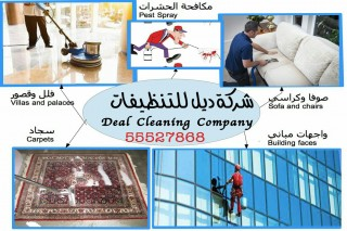 Deal Cleaning
