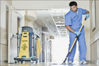 shine services for cleaning & disinfection and pesticides