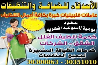 Cleaning Services For Houses