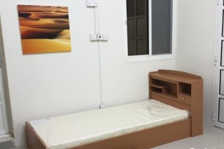 Bed Spaces for Executive Bachelor in Doha
