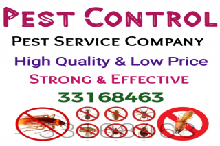 BEST Pest Control Service Company