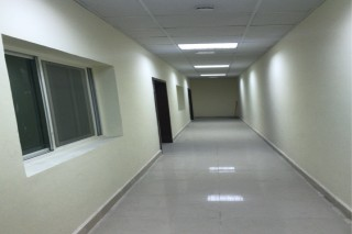 lab our camp For Rent