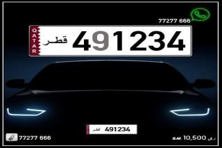 491234 Special Registered FOR SALE