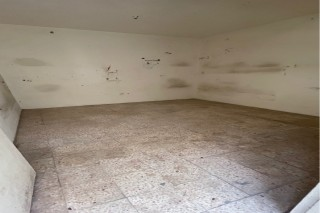 10 rooms available street 4 for rent