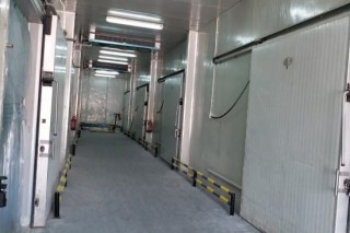 60 SQM, Cold Stores for rent (-18, +5 & +20 degrees) with racking, including utilities | Street 2